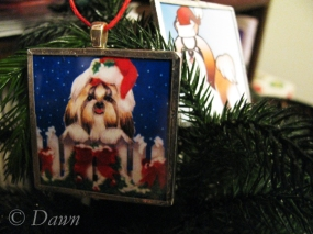 Ornaments with doggie pictures!