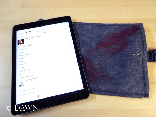 iPad and felt sleeve