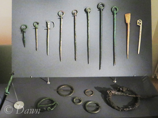 Ringed pins and brooches