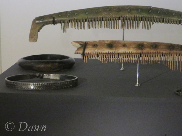 Bracelets and combs from the museum
