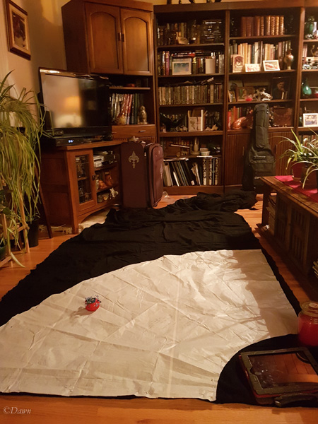 My living room was the only flat surface large enough to cut out the skirt for my Cranach gown.