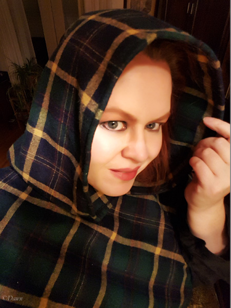 Plaid hood inspired by Midgaarb's hooded capelets
