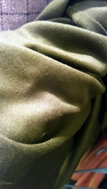 Beautiful luxurious green wool (possibly a wool-cashmere blend) from the Grandmother's charity Fabric Sale in Calgary, April 2018