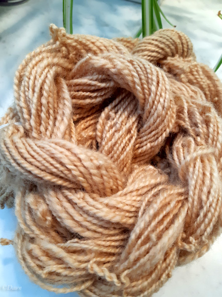 natural white Romney handspun 2-ply wool dyed with apple tree twigs and bark