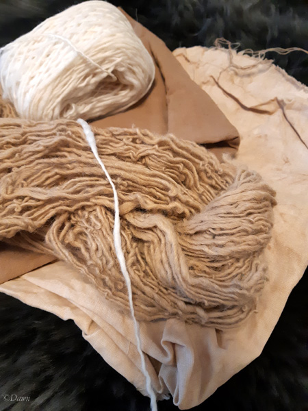 Oak gall dyed wool yarn, silk and linen fabric, show with an undyed sample of wool for colour comparison.